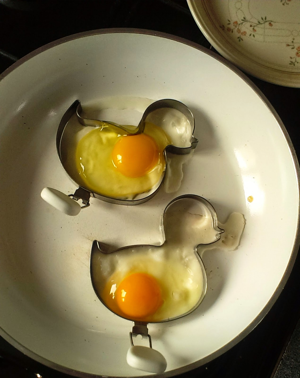 Fried egg ducks