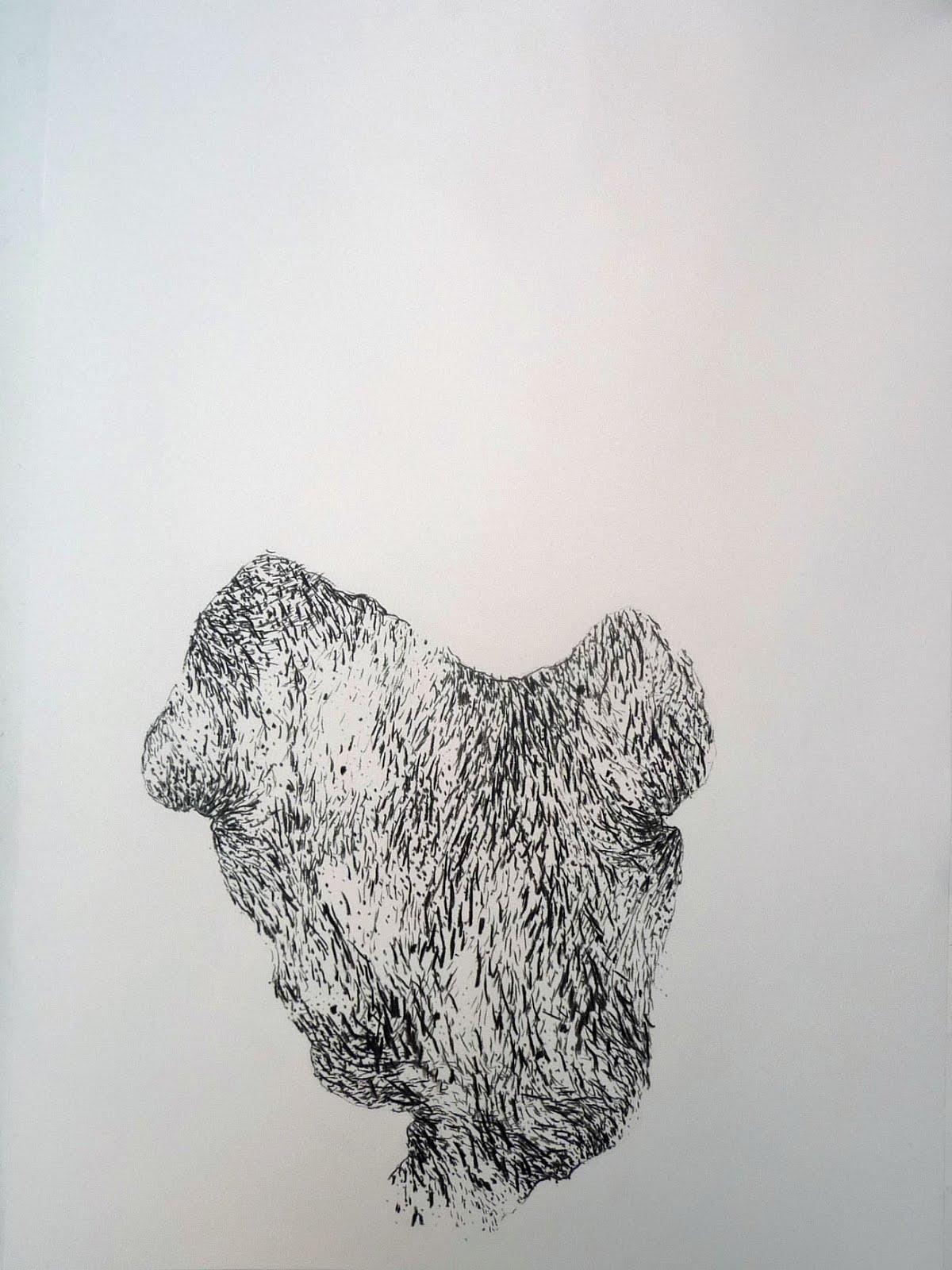 Fusain/papier 70x50 2015