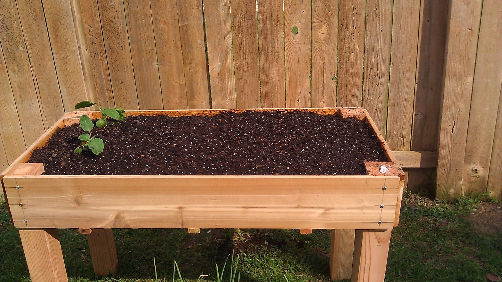 Counter Height Garden Boxes : ... just a girl who creates...: Build your own counter height garden box
