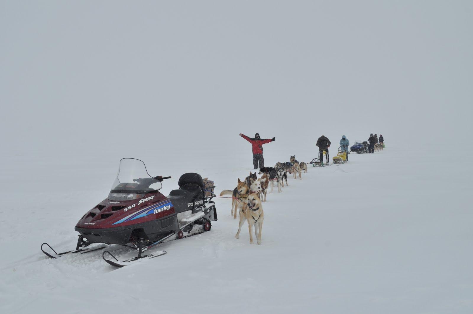 комбинированные путешествия упряжек со снегоходами