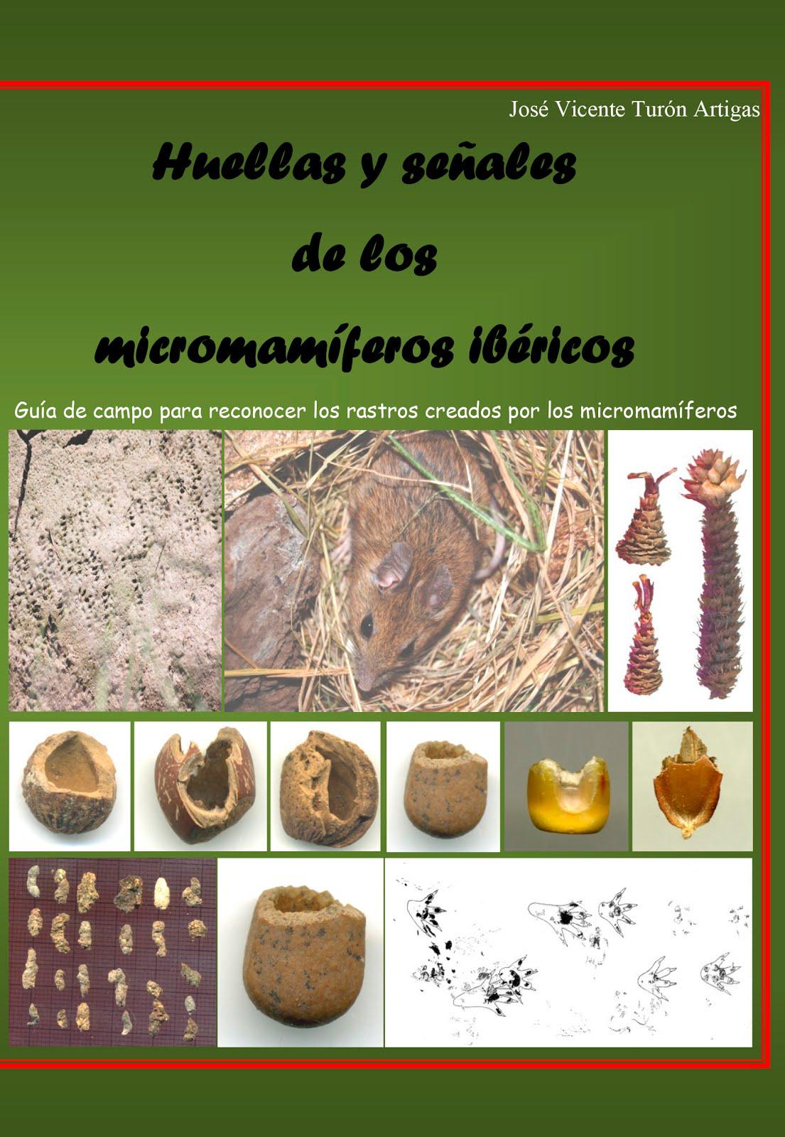 Rastros de los micromamíferos