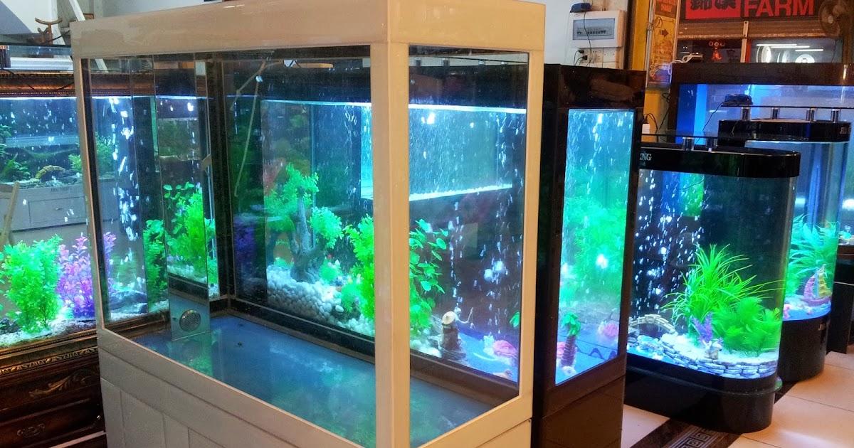 Mundo acuario el acuario y su ubicaci n for Mueble acuario