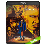 Animales fantásticos: Los crímenes de Grindelwald (2018) HDRip 1080p Audio Dual Latino-Ingles Pesado