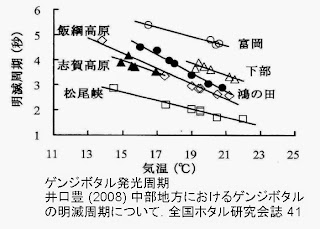 志賀高原,飯綱高原,松尾峡などのゲンジボタル発光周期