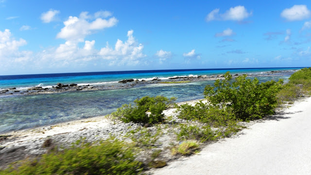 Salt Fields Bonaire