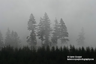 Best Places to See in BC, Foggy Weather Conditions