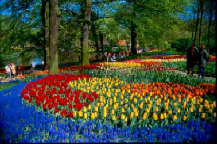 Olanda dà senza dubbio il meglio di sé in primavera quando oltre a