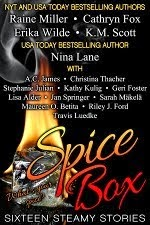 SPICE BOX-16 Steamy Stories