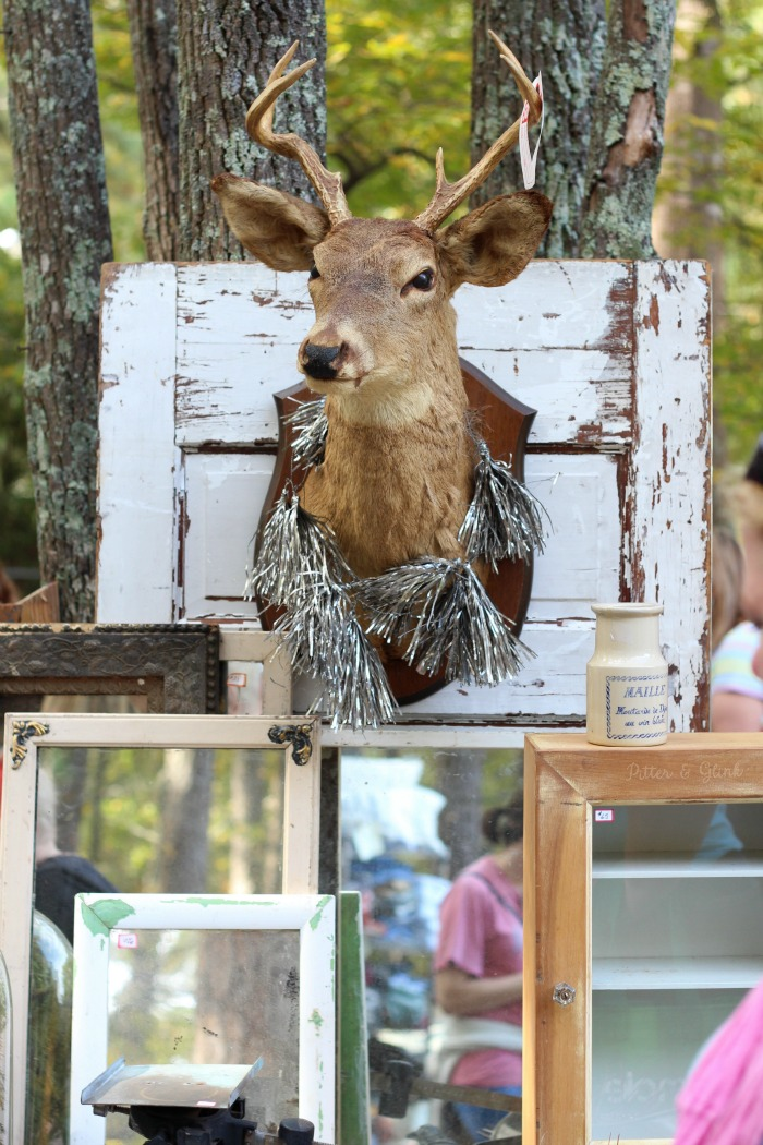Five Home Decor Trends from the Country Living Fair: Taxidermy www.pitterandglink.com