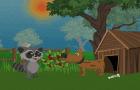 Raccoon's Adventure