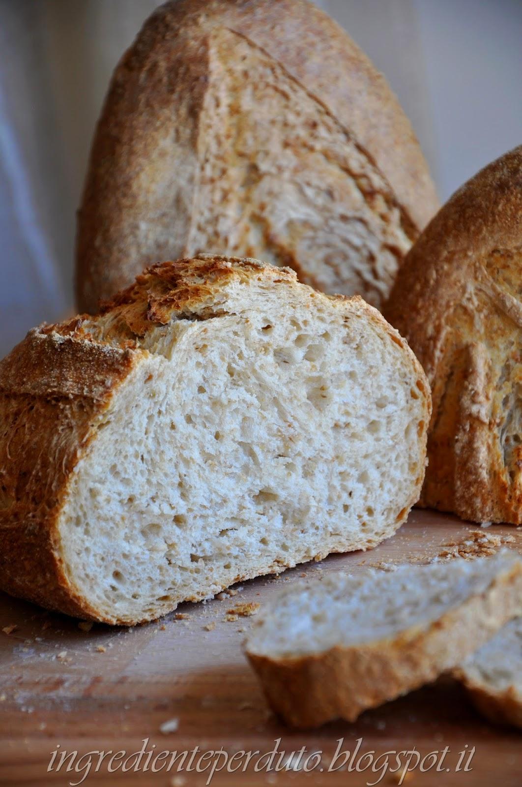 pane con grano spezzato-ingrediente perduto