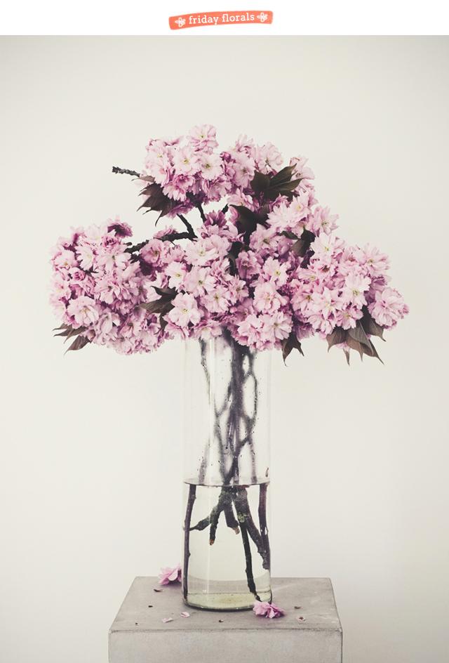 friday florals 040