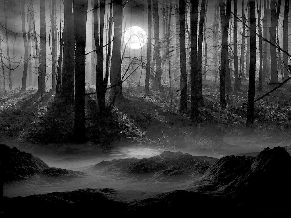 Posted in Nature Gothic Wallpapers   Tags  Dark Forest WallpaperGothic Forest Backgrounds