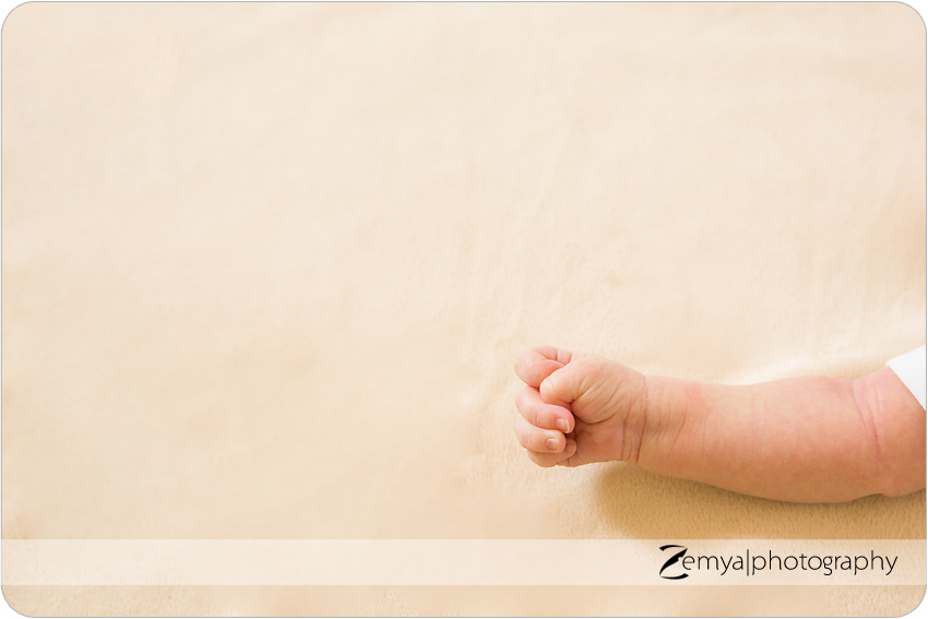 San Mateo newborn, child & family photography