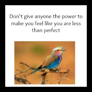 Don't give anyone the power to make you feel like you are less than perfect