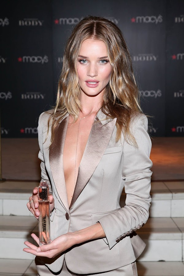 4 Rosie Huntington Whiteley Looks Hot in Beautiful Dress