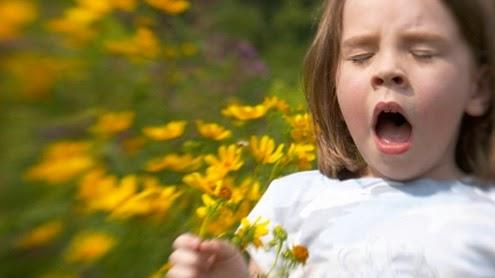 2 Remedios saludables reacción alérgica