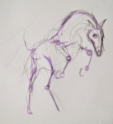 Схема строения ног лошади.