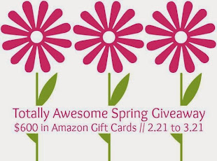 $600 Amazon GC Giveaway