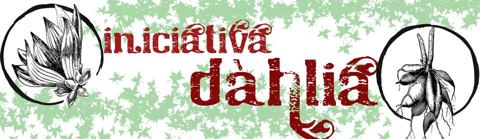 http://3.bp.blogspot.com/-yzLFlyDkp8g/Te7GR5zftOI/AAAAAAAAAAo/SXEW4ol2ER4/s1600/blogdahlia.jpg