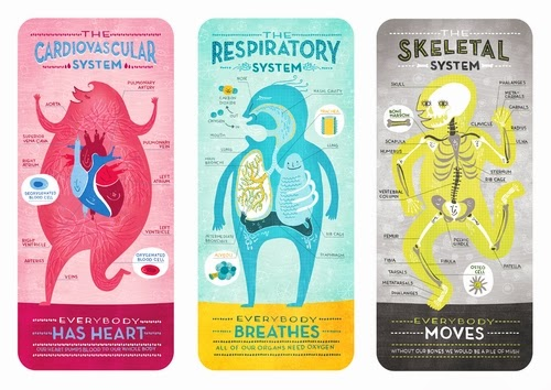 00-Front-Page-Body-System-Graphic-Designer-Illustrator-Rachel-Ignotofsky