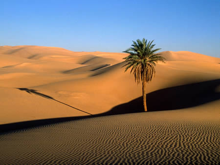 Afrika Pustinja-9