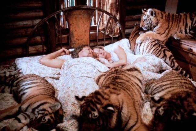 roar+bed.jpg