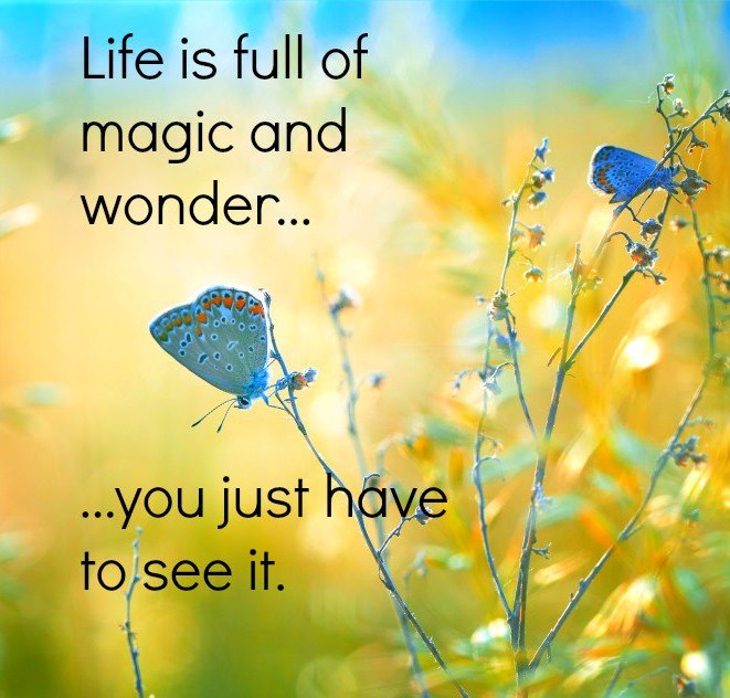 Life Quotes And Sayings Life Is Full Of Magic And Wonder