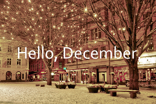 Happy December Where has photo 3431042-1