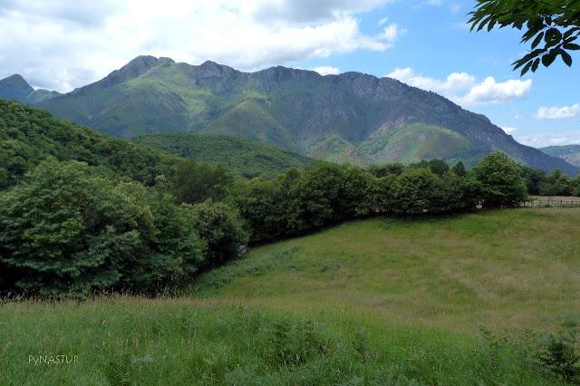 Pico de Peñaescrita Asturias