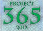 Project 365 - 2013