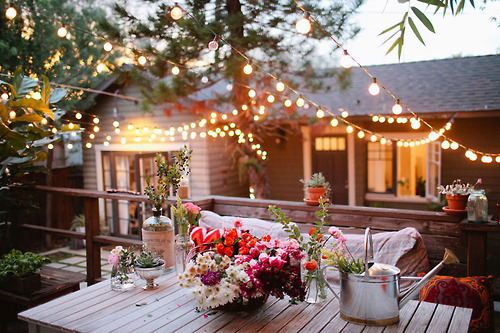 outdoors, festoon lights, globe lights, tumblr, pinterest, garden, cute, flowers, film grain, lights