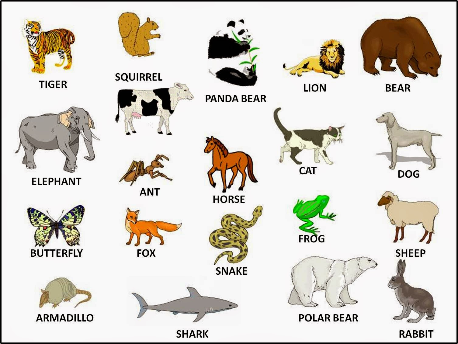 Stepglishforward: Learning English Language and Culture: ANIMALS and ...