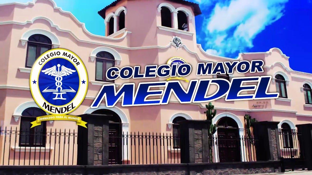 Colegio Mayor Mendel/Jerusalen 607