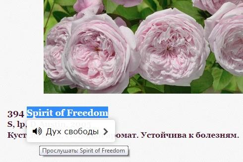 перевод и произношение названий сортов роз
