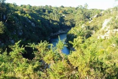 Llanes, río Purón