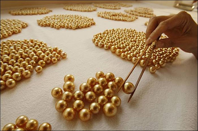 Rare Golden Pearls
