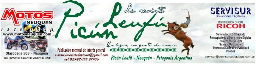 La Revista de Picún