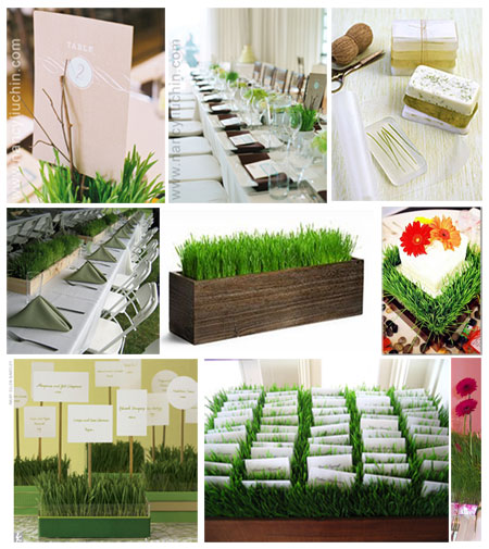 Lq designs diy centerpiece we wuv wheatgrass intimate for Cheap and easy wedding decorations