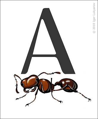a is for ant (drawing ant)