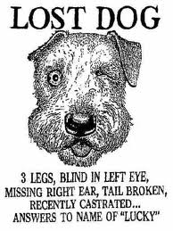 missing my dog named skippy I'm trying to find the old joke about the lost, misfortune-ridden dog named lucky so i can print it out.