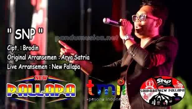 Brodin - SNP (New Pallapa Live TMII Jakarta 2015)