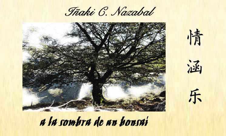 a la sombra de un bonsai