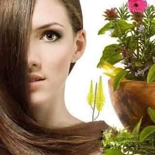 Saç dökülmesi, ince saçlar, kepek oluşmasını engelleme, bitkilerle saç boyama, saç bakımında şifalı bitkiler, yağlı saçlar, kuru saçlar, saç beyazlamasını öneleyen bitkiler, saç beyazlaması
