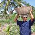 Governo amplia participação de agricultores no Pnae e PAA em Mamanguape