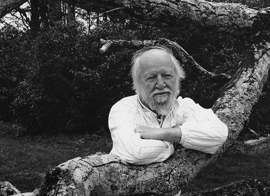 """the message of william golding in Introduction: it is common knowledge that very often the author shares his message with the reader with the help of certain symbols william golding's """"lord of."""