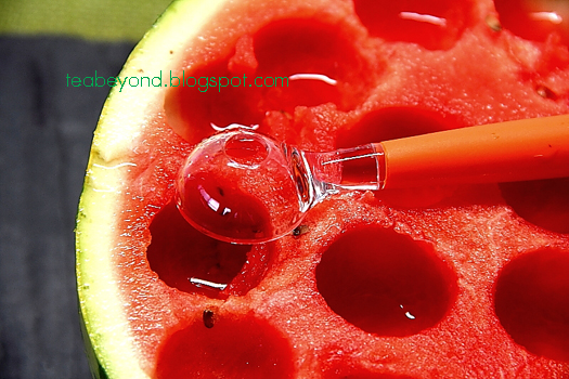 ... mojito fruit ice pops recipe dishmaps mojito fruit ice pops recipe