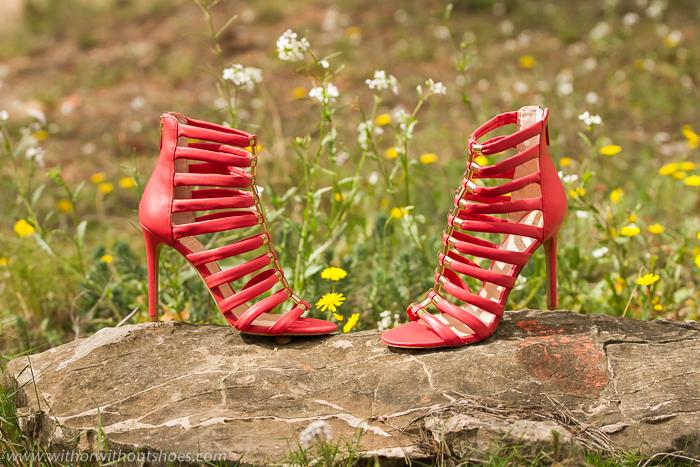 Blogger experta en zapatos
