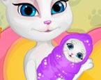 Kedi Doğum Ameliyatı