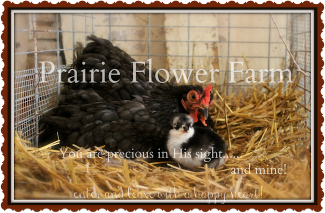 Prairie Flower Farm